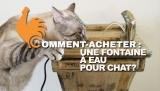 Fontaine à eau pour chat: Guide d'Achat pour acheter la meilleure